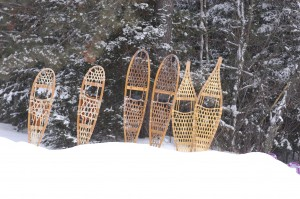 Snowblast snow shoes