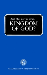 Just_What_Do_You_Mean_Kingdom_Of_God