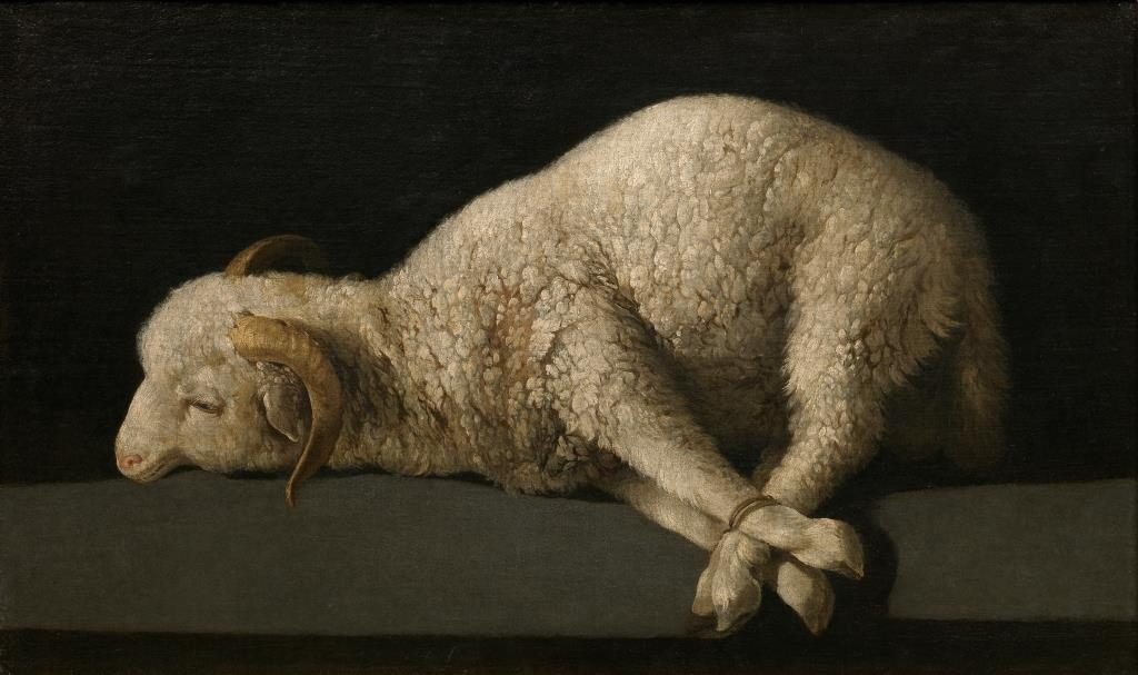 Lamb of God by Zurbarán (public domain via Wikimedia Commons)